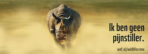 wnf_wildlifecrime_facebooktimelinecoverneushoorn4_15189