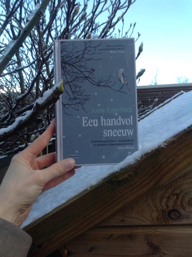 Een handvol sneeuw